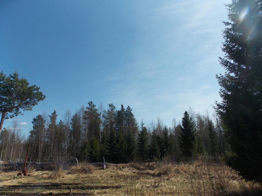 ст эхо, за нефтебазойучасток 10 соток, разработан. рядом лес, водоем с питьевой водо...