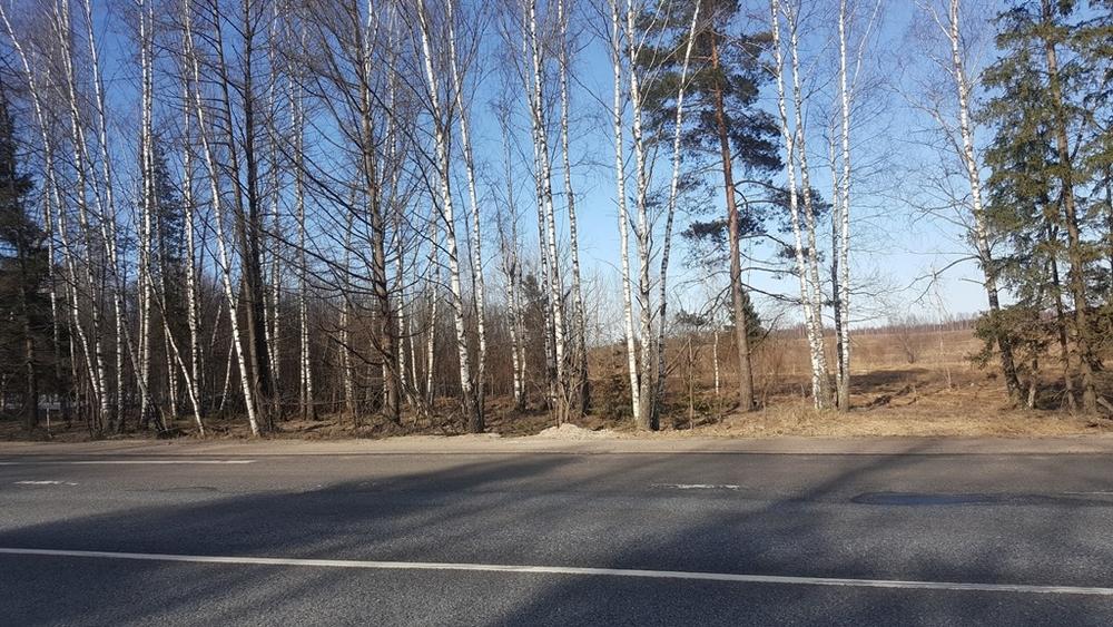 Владимирская область, Александровский район, Площево, ул. Без улицы, 4