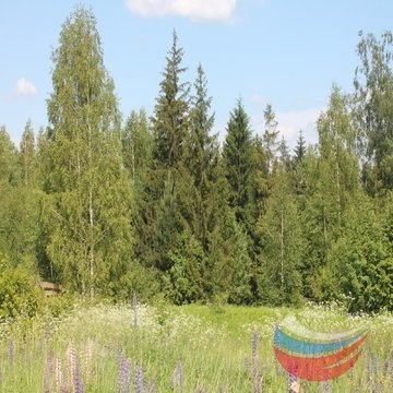 Владимирская область, Володино 8