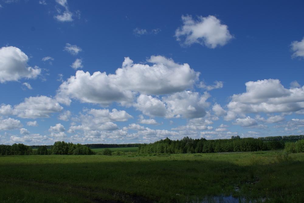Большому и красивому земельному