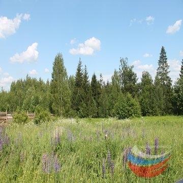 Владимирская область, Володино 7