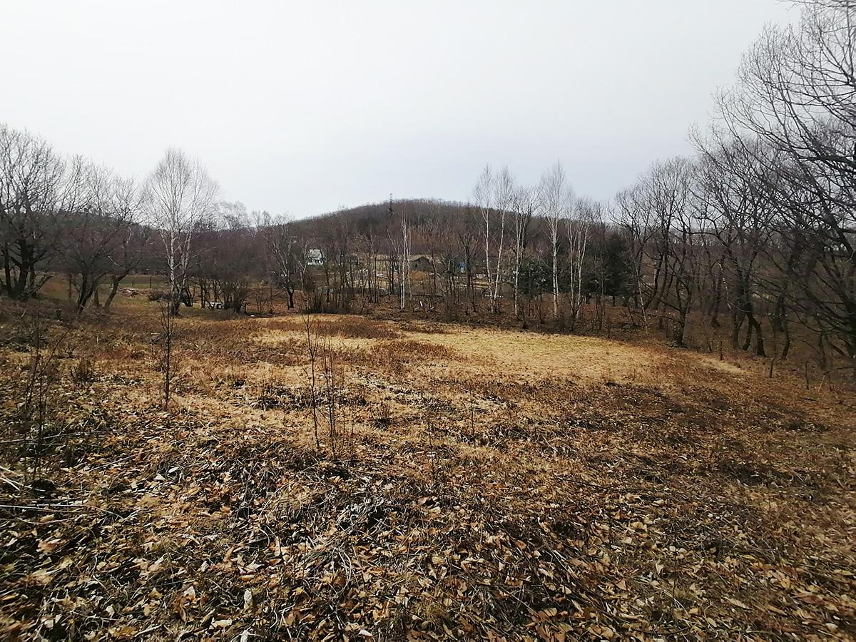 Фото: Земельный участок во Владимиро-Александровском