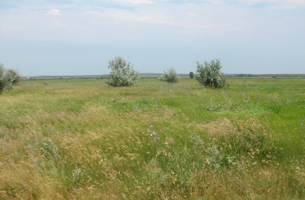 Саратов, ул., площадь: 0  м2, участок: 7 соток.