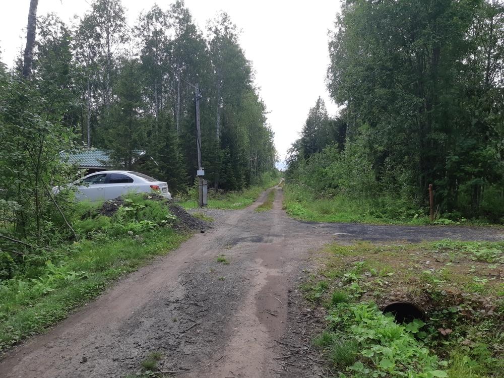 Архангельская область, Озерное, 1-я Линия ул., д. 1